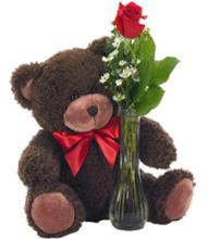 Bear and Single Rose