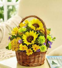 Fields of Europe Summer Basket