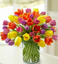 Enchanting Tulip Bouquet